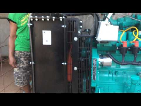 40kW Biogas Generator from Chicken Manure, Goldenbarn Livestock Farm, Mabitac Laguna, Philippines