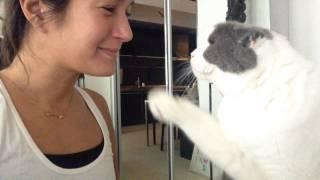 Fuzz Buzz - Kitty boop