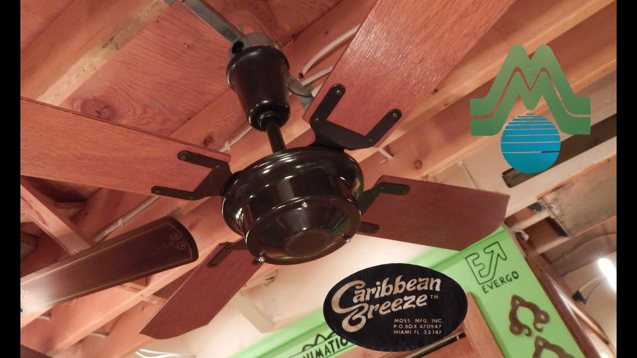 Moss Caribbean Breeze Ceiling Fan Doovi