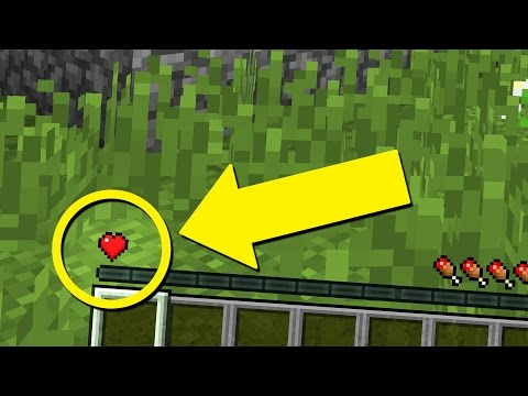 Surviving Minecraft with ONE HEART!!