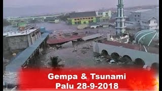 Download Video Gempa & Tsunami Palu, Tanda Tanda Sebelum Terjadinya MP3 3GP MP4
