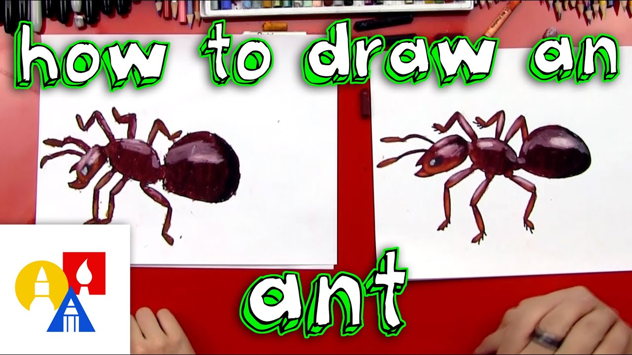 how to draw an ant youtube