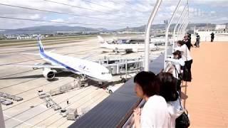 大阪国際空港(伊丹空港)の中央エリアがリニューアルオープン