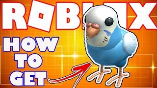 [BONUS ITEM] How To Get the Blue Budgie Buddy in Roblox - Bonus Catalog Item for Robux Card Purchase