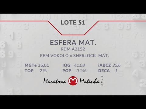 LOTE 51 Maratona Matinha