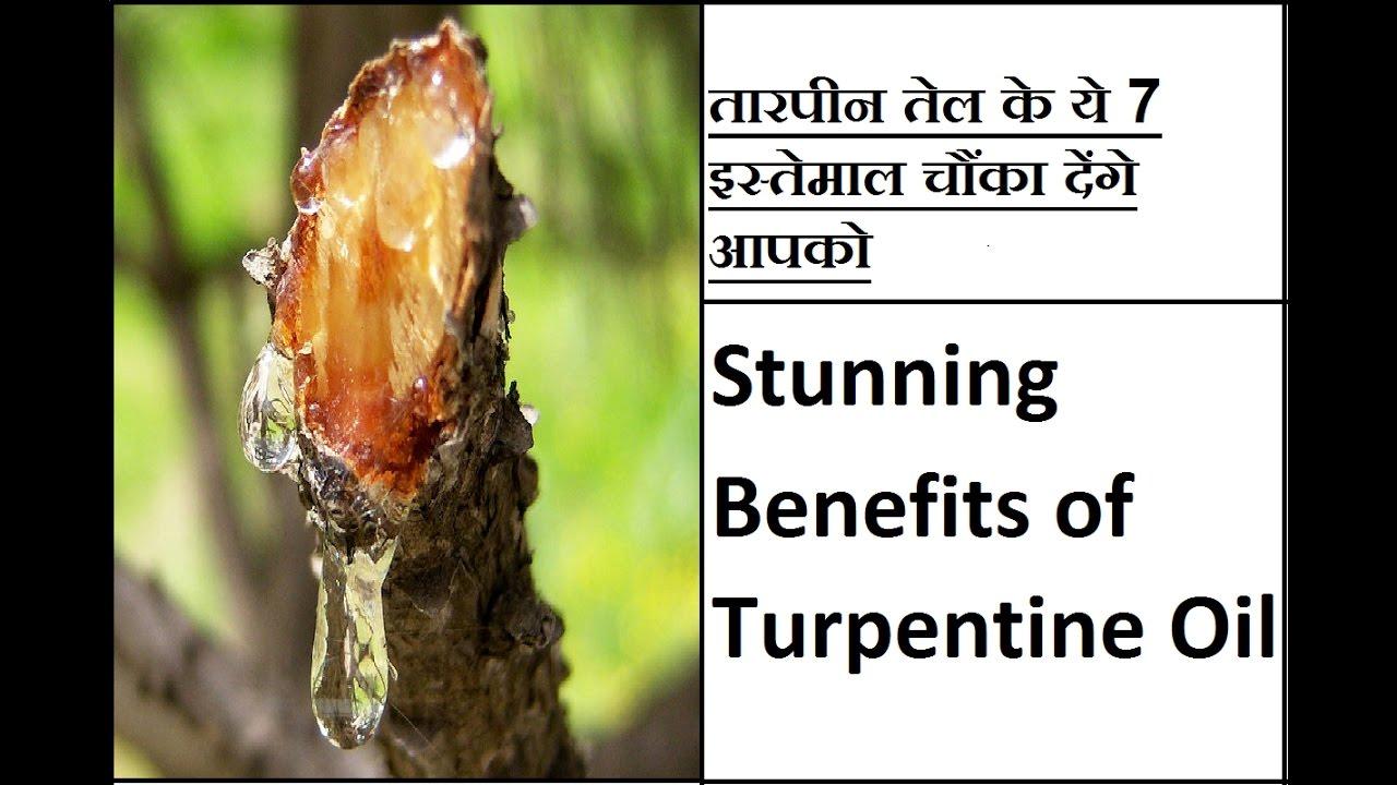 तारपीन तेल के ये 7 इस्तेमाल चौंका देंगे आपको Stunning Benefits of  Turpentine Oil