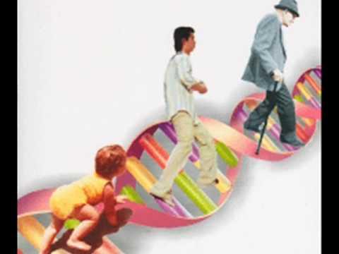 O movimento na educa o infantil youtube - Perchas infantiles de pared ...