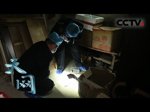 《天网》 20190218 案起杂货铺| CCTV社会与法