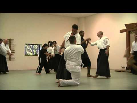 AIKIDO - The Path