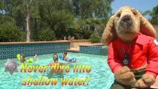 Simon Says: Pool Safety - San Diego County Sheriff's Department