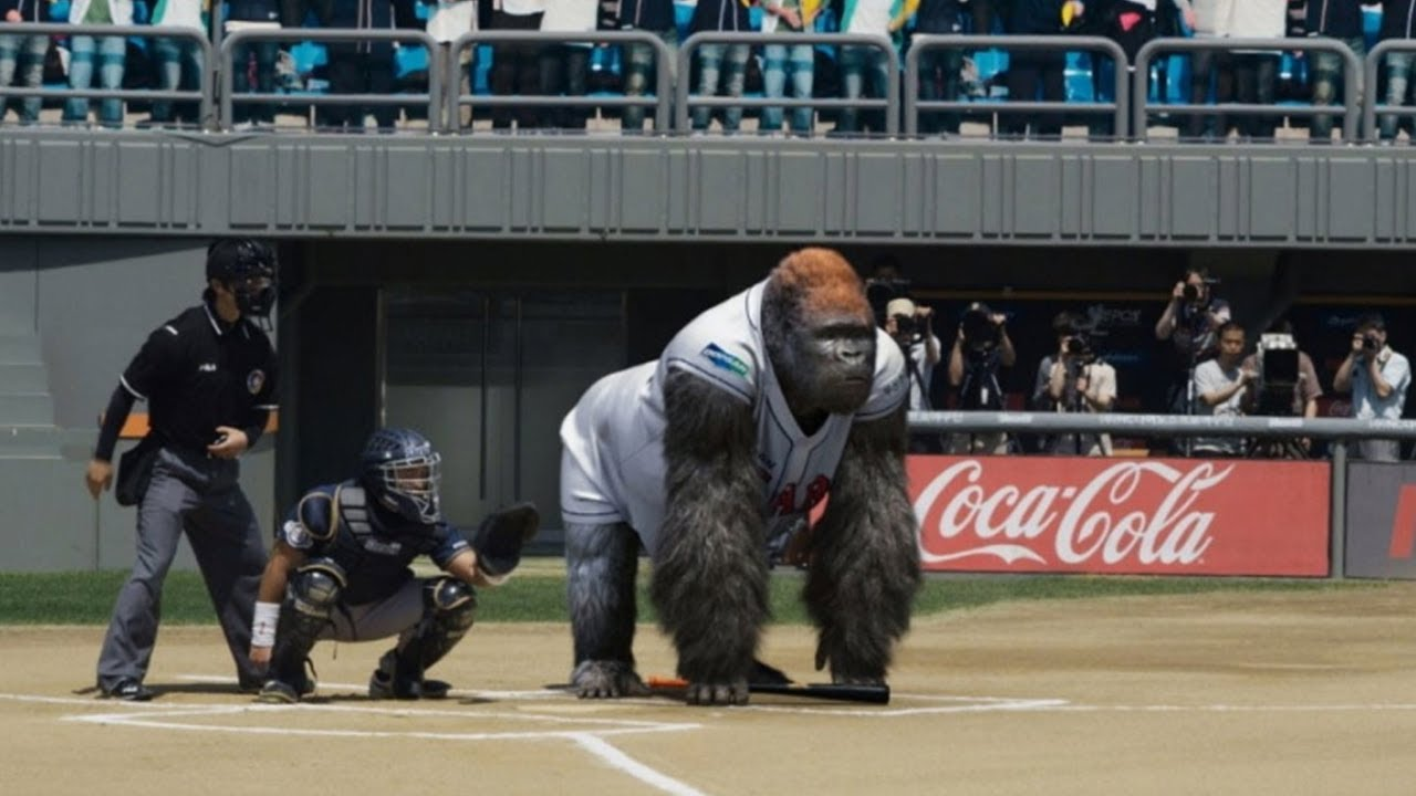 GORILLA ON THE FIELD? Unexpected Animal Interferences in Sports