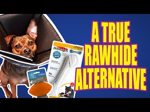 a-safer-rawhide-alternative?---dog-toy-reviews---petstages-newhide-bone-dog-toy-chew
