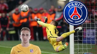 JAN OBLAK •Welcome To Paris??•  Best Saves 2016-2017 (HD)