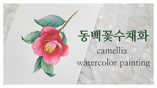 [나무아래그림]동백꽃수채화,동백꽃그리기,꽃그림수채화