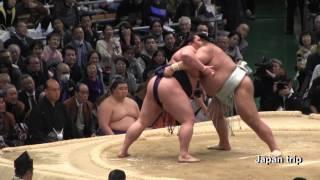 2017大相撲春場所での高安 vs 御嶽海の取組。