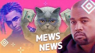 Mews News: Кот за 5 млн. рублей