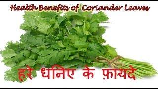 हरे धनिए के फ़ायदे | Health Benefits of Coriander in Hindi