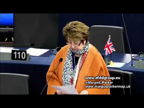 EU Digital Single Market rushed through by Commission bureaucrats - Margot Parker MEP