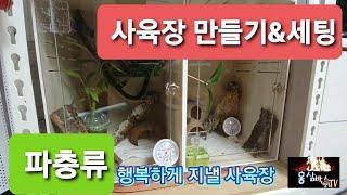 파충류 사육장 만들기 붙이류 토케이게코 포맥스 사육장