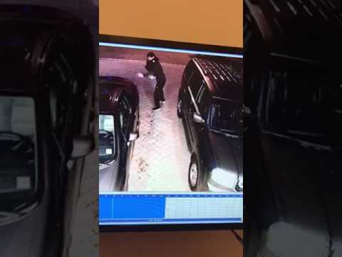 Surveillance video captures the Tenafly vehicle arson.