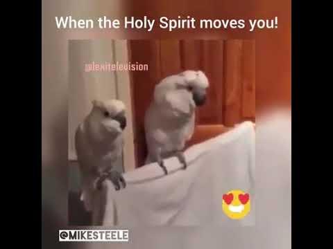 Feeling the holy spirit