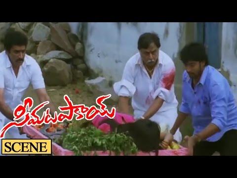 Jaya Prakash Reddy Attack On Nagineedu Action Scene || Seema Tapakai Movie || Allari Naresh, Poorna