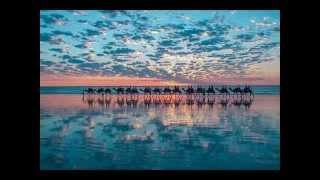 Tinariwen & Kiran Ahluwalia----Mustt Mustt