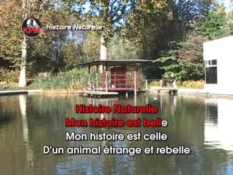 Histoire Naturelle Karaoké - Nolwenn Leroy*