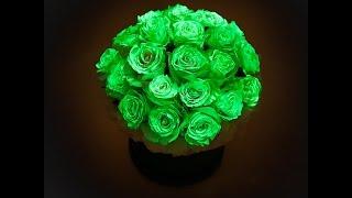 KOMPLIMENT | Розы, светящиеся в темноте(www.kompliment.com .BackStage фотосессии. Цветы в шляпных коробках, розы хамелеоны, розы меняющие цвет, розы в упаковке,..., 2016-01-25T14:14:38.000Z)