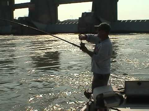 Tristate Outdoors - Ohio River Blue Catfish
