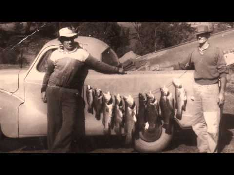 True Tales of the Trout Cod - Reflections on project HD.wmv