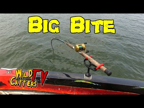 Thumbnail: Ohio River Action:Fishing for Blue catfish around mussel beds