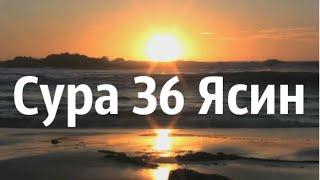 Сура 36 «Ясин». Зияд Пател