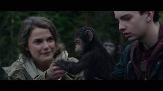 Скачать Apes Together Strong Montage 1968 2017