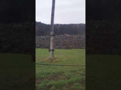 Грязевые потоки повредили дом фермера в Горнозаводске