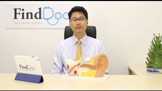 Fly while Having a Cold - Dr. David Ho@FindDoc.com