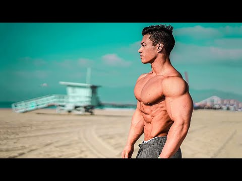 Bodybuilding Motivation - Warrior's Shelter