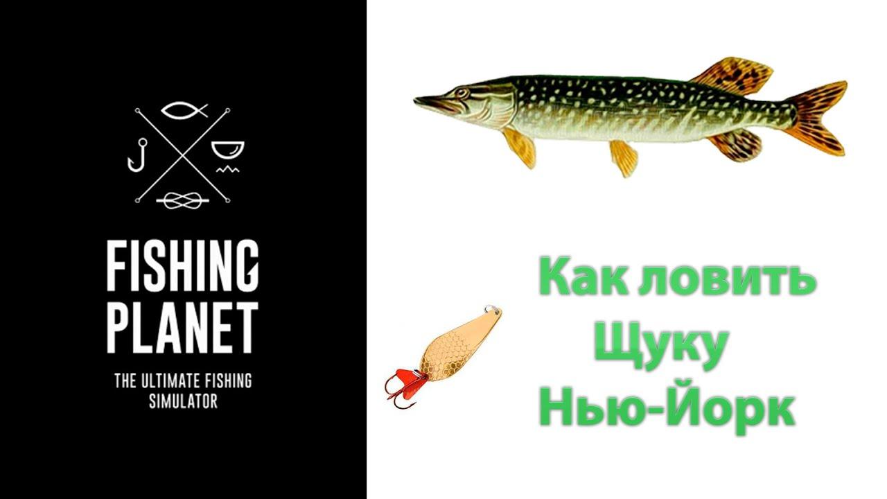 fishing planet что словить рыбу