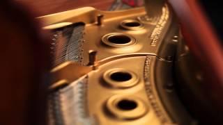 1927 Steinway Art Case Model L 251450