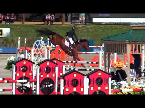 Video of Sovereign ridden by Lisa Goldman from ShowNet!