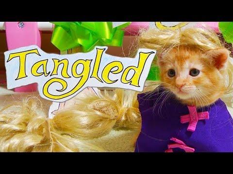 Disney s Tangled (Cute Kitten Version)