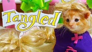 Repeat youtube video Disney's Tangled (Cute Kitten Version)