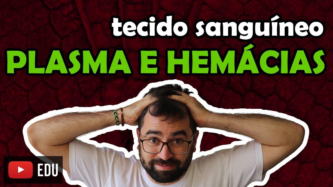 Download Plasma e Hemácias - Sangue - Aula 10 - Módulo VII: Histologia e Fisiologia Humana | Prof. Gui