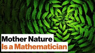 Universal Mathematics: All Life on Earth Is Bound by One Spooky Algorithm | Geoffrey West