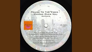 Play Praise to the Vibes (Mr. Fingers Alternate Version)