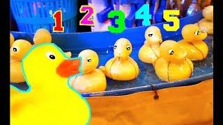 Nursery Rhymes Five Little Ducks  Kids Song