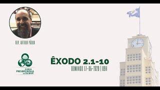 Reflexão: Êxodo 2.1-10 - IPT