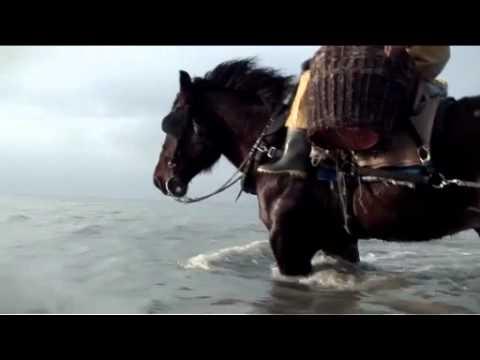 The Last Horse Fishermen Of Belgium