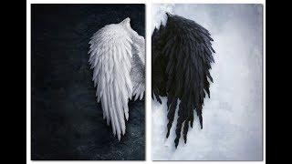 Черный и Белый