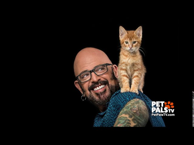 Cat daddy tips from Jackson Galaxy